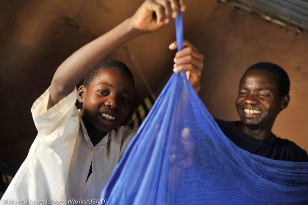Двое мальчиков вешают синию противомоскитную сетку (Riccardo Gangale/VectorWorks/USAID)