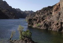科罗拉多河水受到气候变化的严重影响而水源不足(照片:美联社)