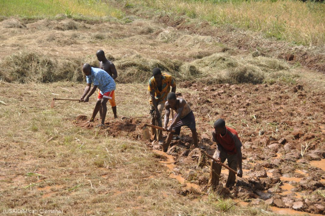 Five men breaking up farmland with hand tools (USAID/Micah Clemens)