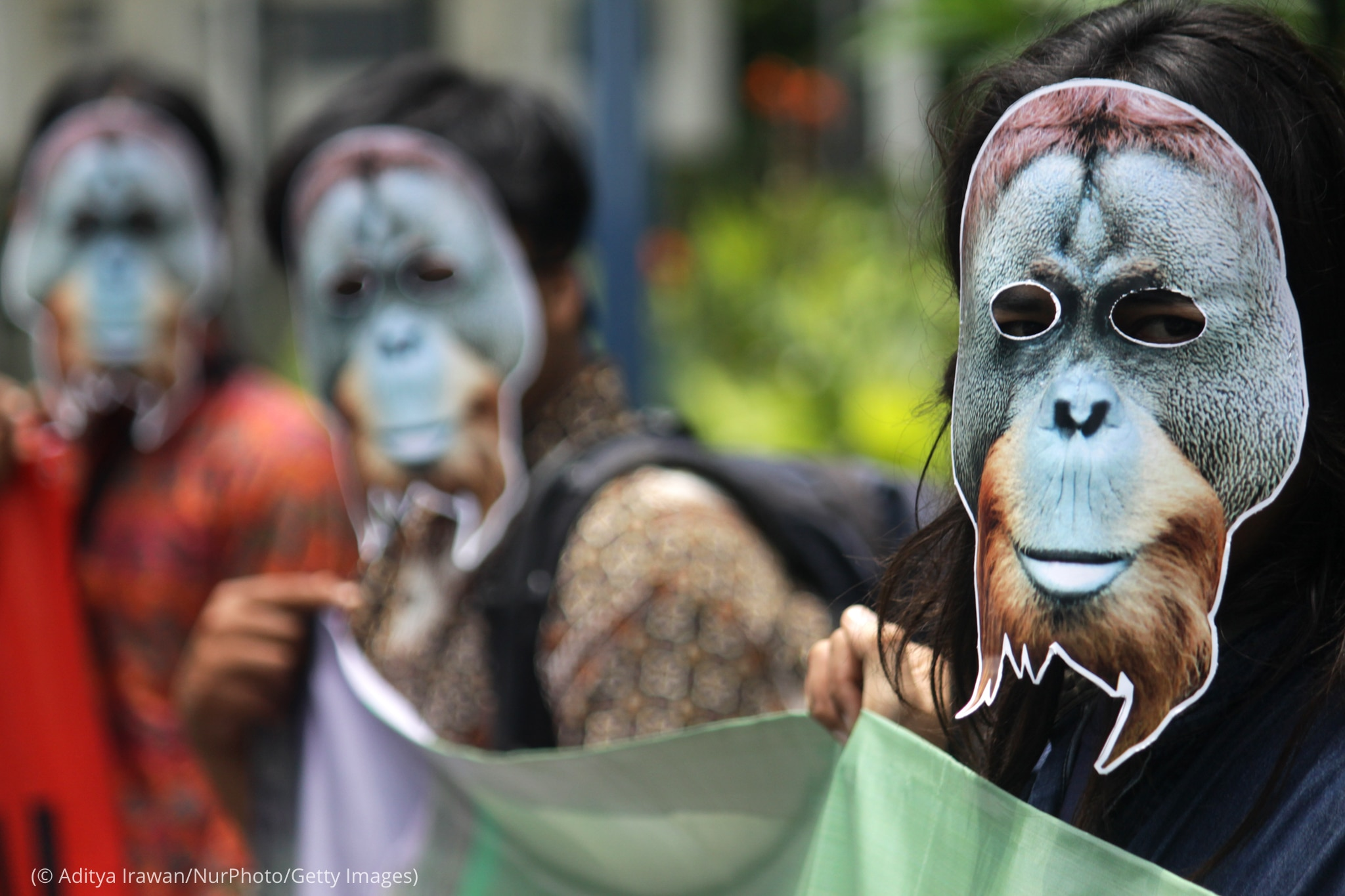 People wearing masks resembling orangutan faces (© Aditya Irawan/NurPhoto/Getty Images)