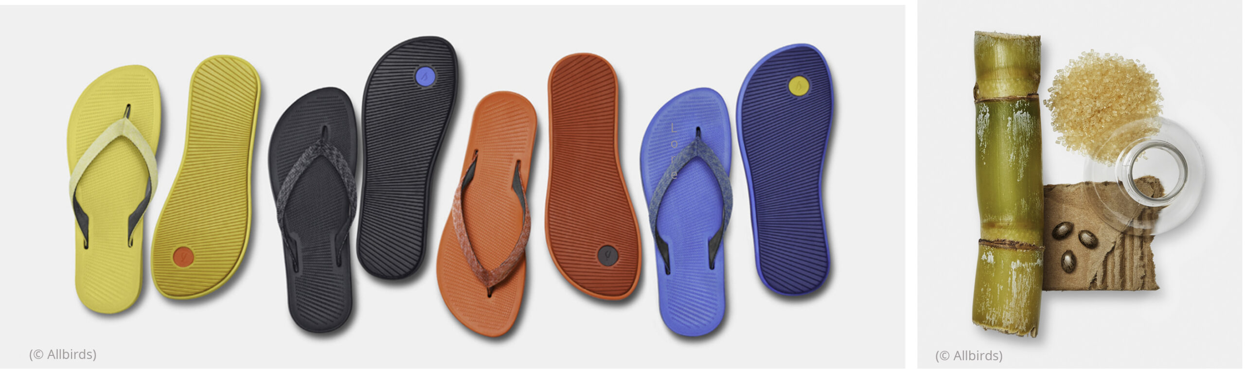 Left: Line of colorful flip-flops on white background. Right: Sugar cane and other materials used to manufacture flip-flops (© Allbirds)