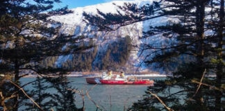 Ship on water seen in distance through trees (U.S. Coast Guard/Chief Petty Officer Kip Wadlow)