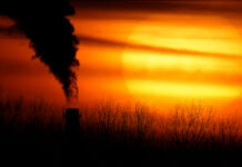 Smoke stack seen through field with setting sun in background (© Charlie Riedel/AP Images)