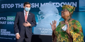 Ngozi Okonjo-Iweala speaking next to an ice sculpture depicting fish as man looks on (© Fabrice Coffrini/AFP/Getty Images)