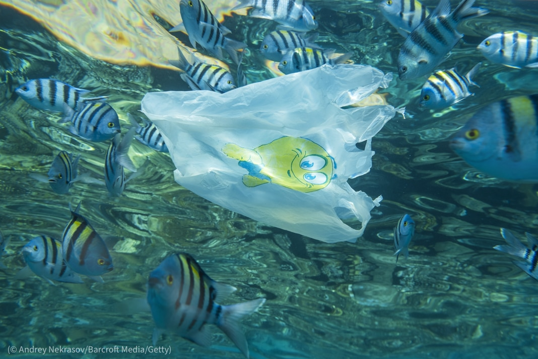 Plastic bag floating under water (© Andrey Nekrasov/Barcroft Media/Getty)