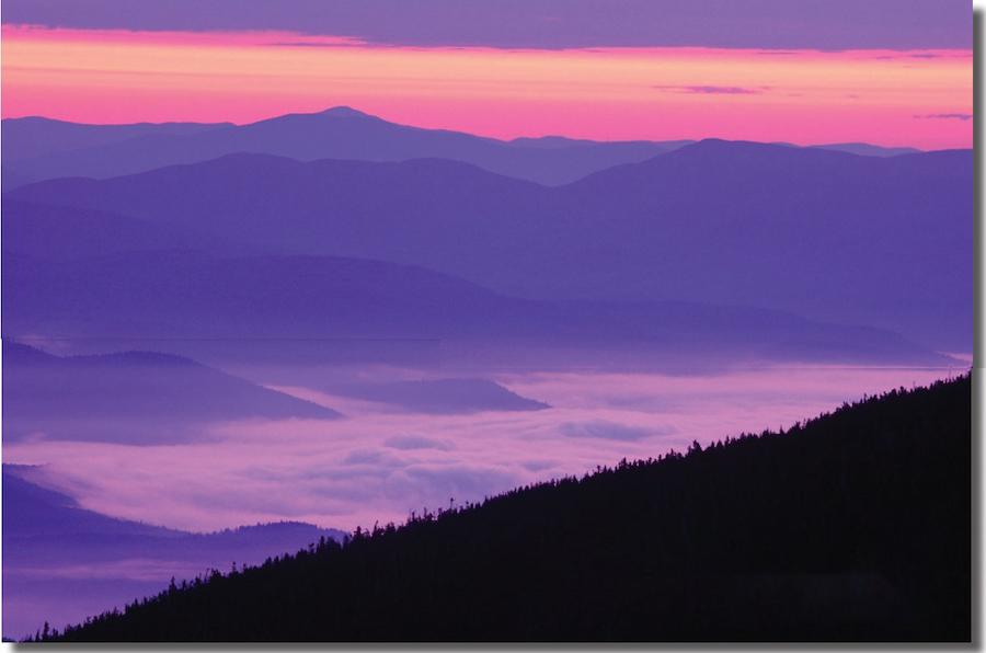 图为白山国家森林。远景的起伏山峦就是著名的总统山脉。(撷取自国家森林管理局白山森林2007年年度报告封面)