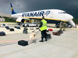 Un hombre con un perro con correa de pie entre maletas en una pista de aterrizaje frente a un avión (© ONLINER.BY/AP Images)