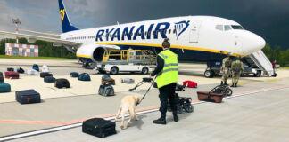 Un homme vu de dos, avec chien en laisse, debout au milieu de bagages posés sur le tarmac devant un avion (© ONLINER.BY/AP Images)