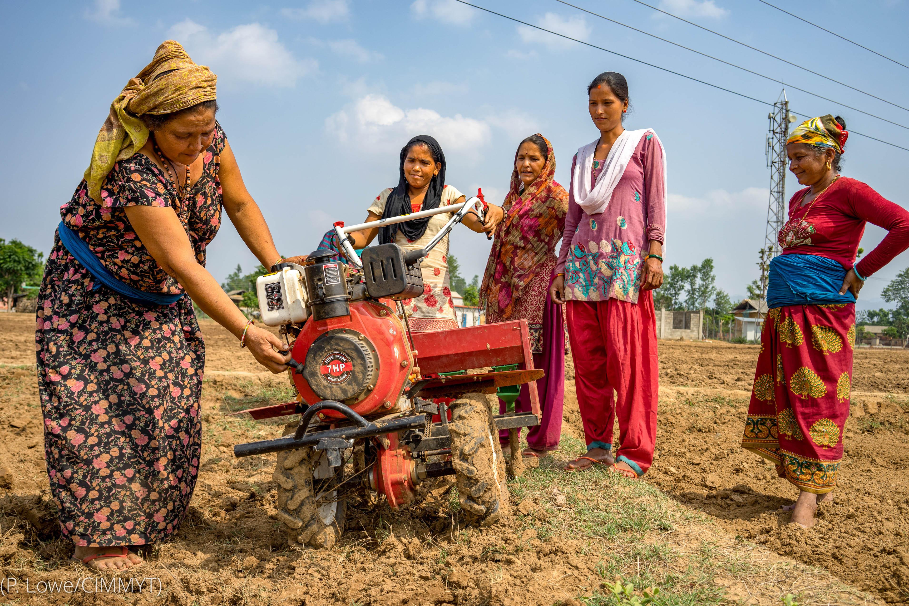 Женщина в поле использует малогабаритное оборудование (P. Love/CIMMYT)