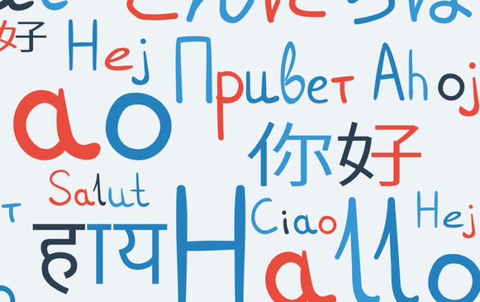 Refugees bring valuable language skills