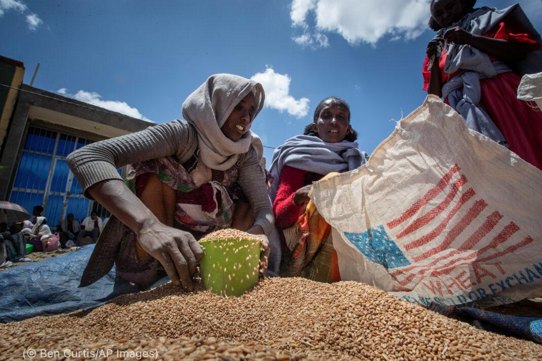Une femme qui remplit un récipient avec des grains de blé (© Ben Curtis/AP Images)
