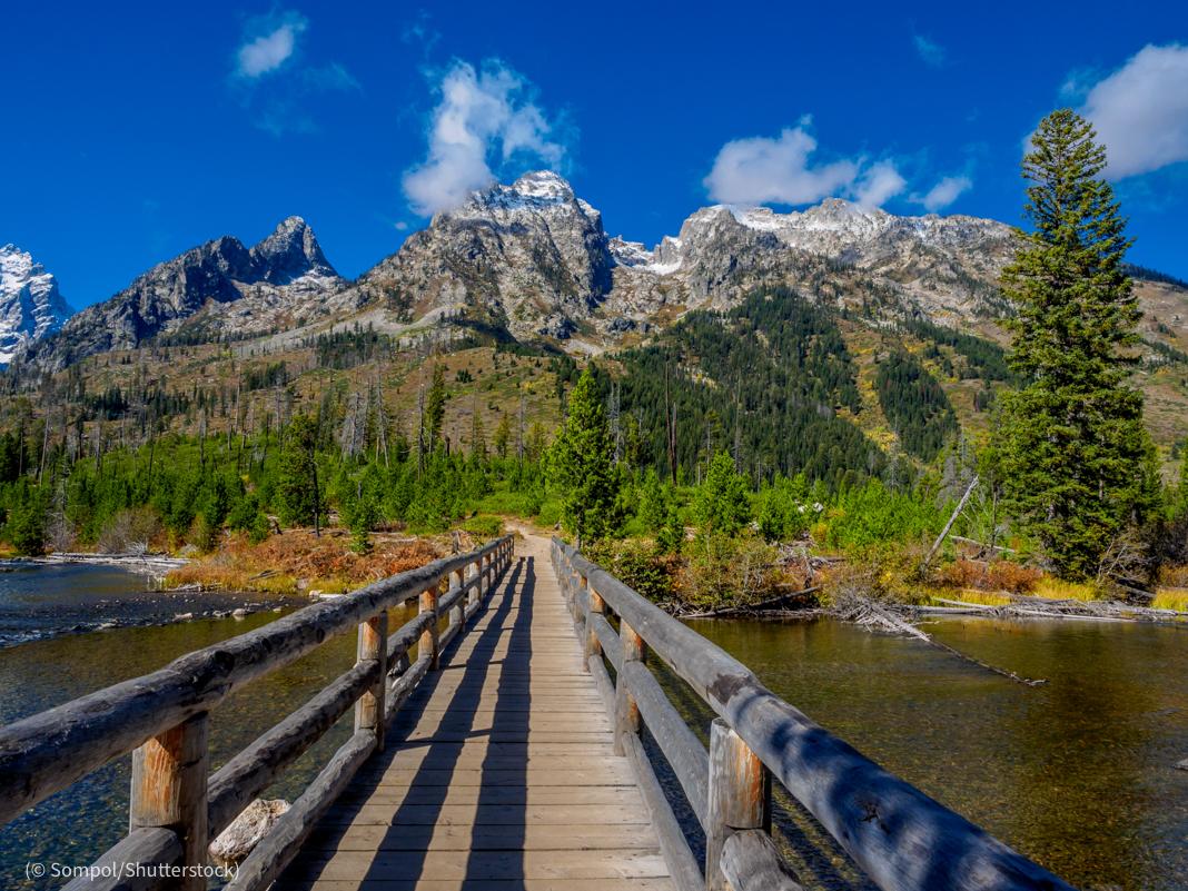 Una pasarela de madera que conduce a un paisaje boscoso con montañas en la distancia (© Sompol/Shutterstock)