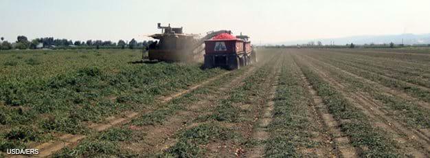 """""""民以食为天"""",农业用地对全球气候变化的影响堪比冰河期结束时期冰盖消融。这张图片显示的是美国的一个家庭农场。虽然大规模家庭农场只占美国农场总数的2.9%,产量却占到了42%。(美国农业部)"""