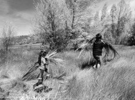 Dua orang membawa alang-alang melintas padang (© Quirina Luna Geary)
