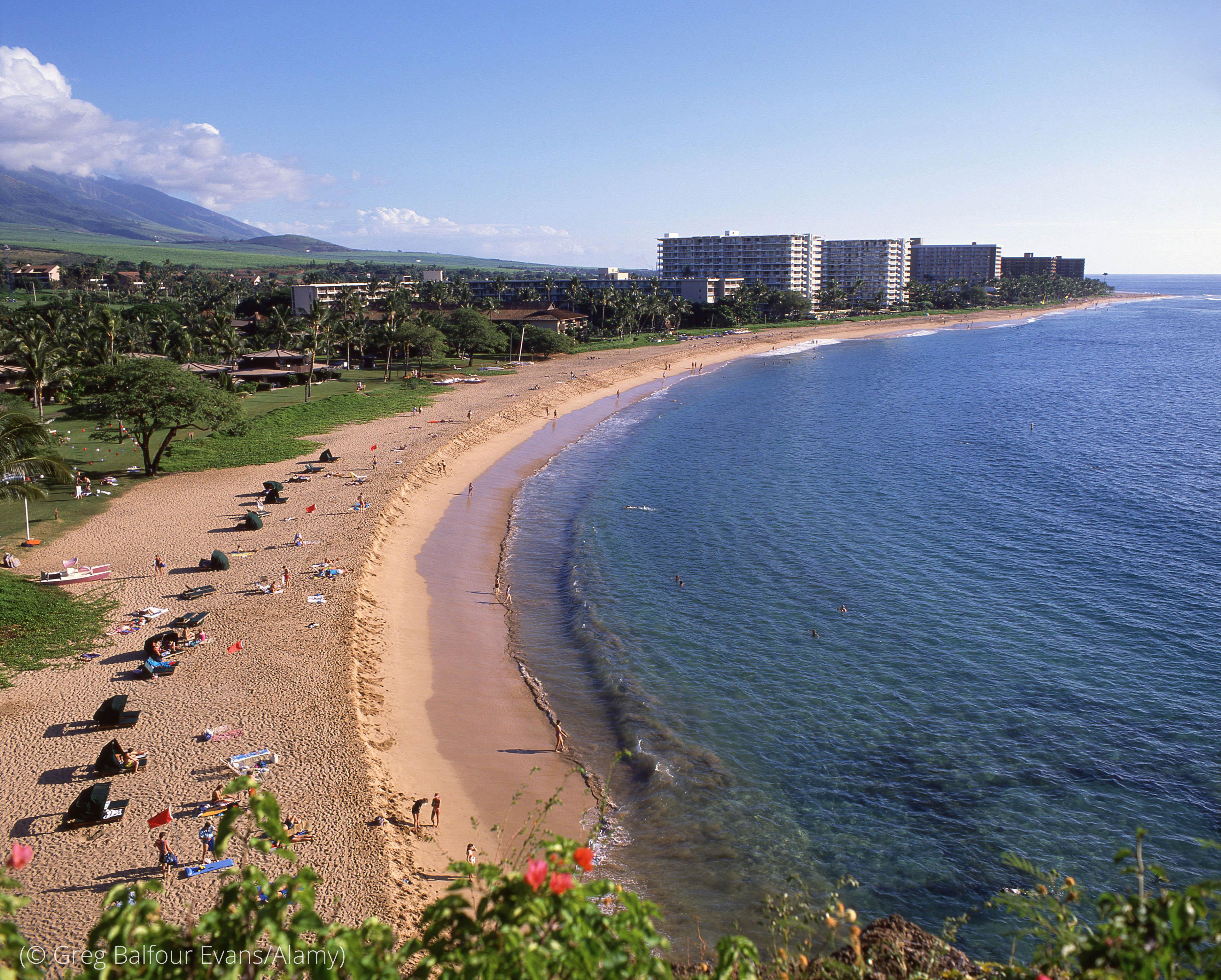 Hawaii, dikenal akan pantainya yang indah, memiliki delapan komunitas Zona Biru. (© Greg Balfour Evans/Alamy)