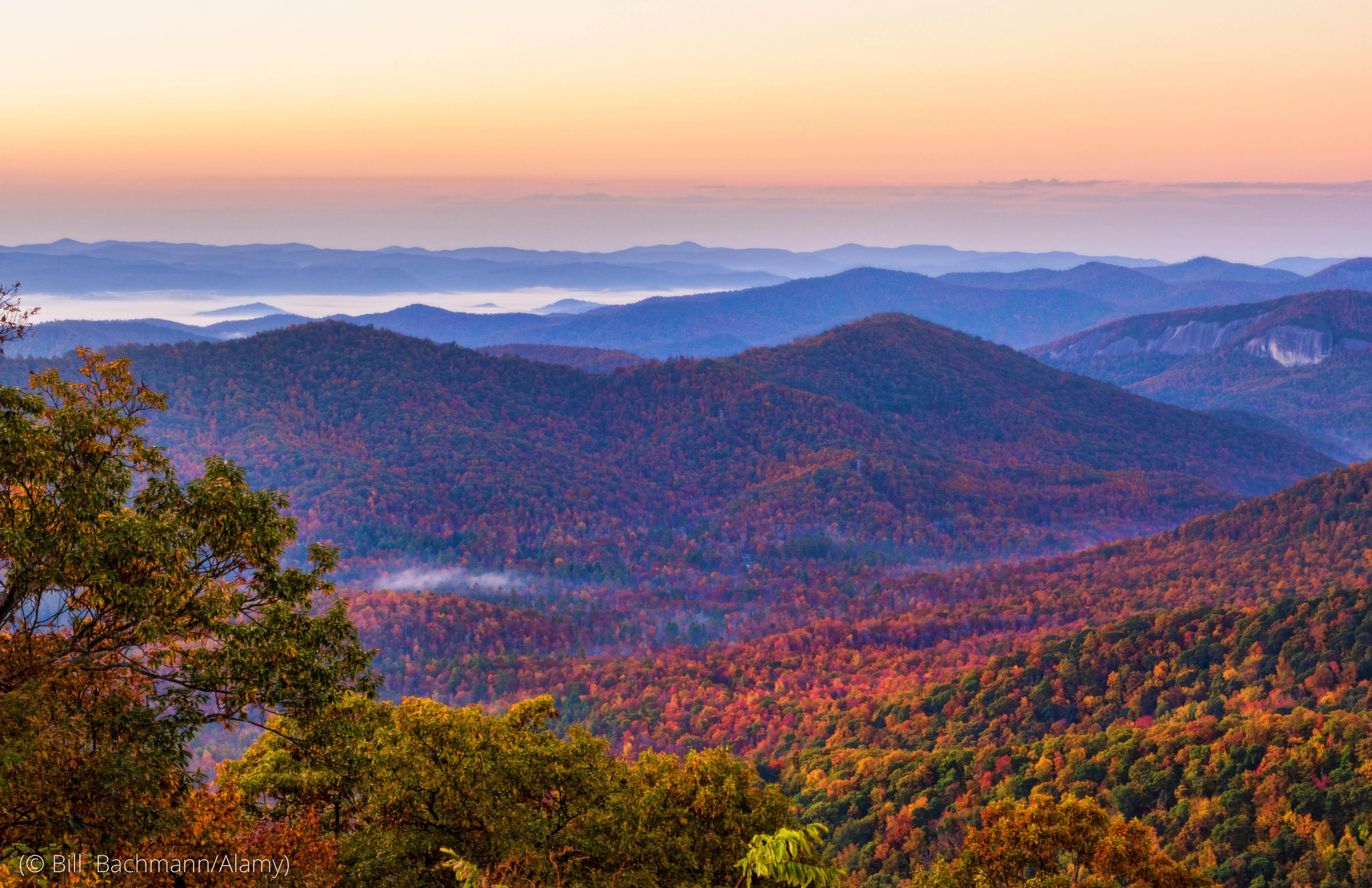 Montanhas cobertas de árvores e névoa (© Bill Bachmann/Alamy)