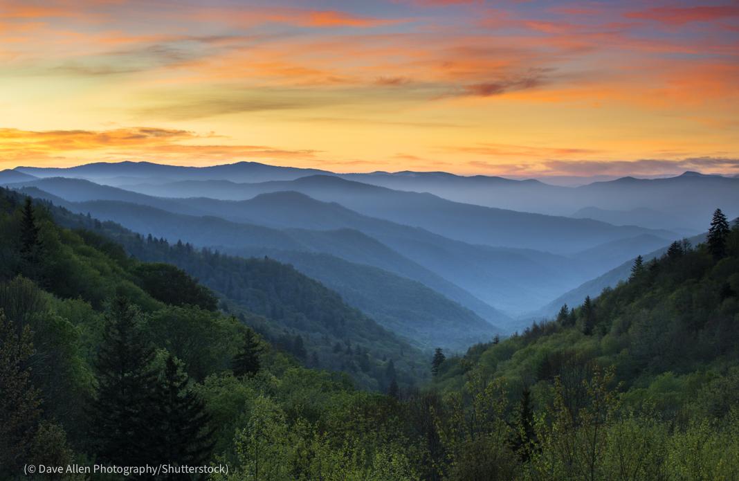 Matahari terbit dengan kabut yang menyelimuti gunung yang ditutupi hutan (© Dave Allen Photography/Shutterstock)